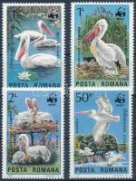 WWF: Dalmatian pelican set + 4 FDC, WWF: Borzas gödény sor + 4 FDC