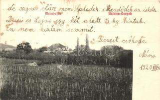 Csopak, Balaton-Csopak; Manci villa (fl)