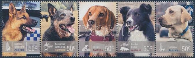 Dog stripe of 5 Kutya ötöscsík