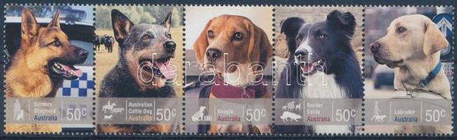 Dogs stripe of 5 Kutya ötöscsík