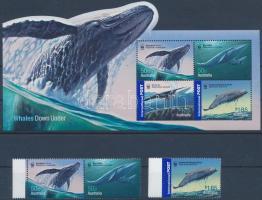 WWF: Whales set + block WWF: Bálna sor + blokk