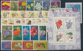 1960-1982 Flowers, Mushrooms 34 stamps + 1 block, 1960-1982 Virágok, gombák 34 db bélyeg, közte teljes sorok + 1 db blokk stecklapon