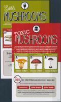 Ghana, Edible and toxic mushrooms 2 mini sheets, Ghána ehető és mérgező gombák 2 db kisív