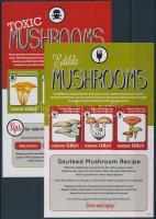 Mushrooms 2 minisheets, Ehető és mérgező gombák 2 db kisív