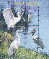 Water birds mini sheet, Vízi madarak kisív