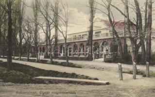Balatonalmádi, Vigadó mozgóképszínház, mozi