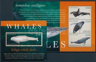Whales minisheet + block, Bálnák kisív + blokk