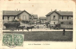 Asile de Vaucluse, La colonie / colony, TCV card