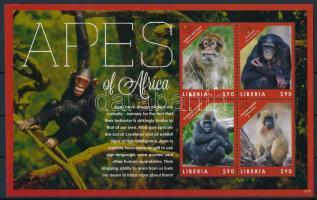 Apes of Africa minisheet Majmok kisív