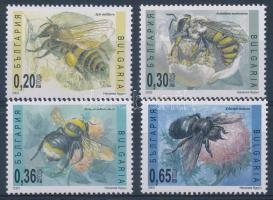 Rovarok sor, Insects set