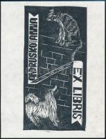 Andruskó Szilveszter (?-): Ex libris Andruskó Anna. Linó, papír, jelzés nélkül, 10×5 cm