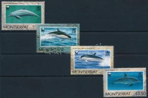 WWF Dolphins set, WWF: Delfin sor