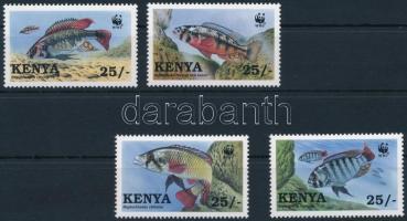 Fish from Lake Victoria set A Victoria-tó ritka ciklidái (bölcsőszájúhal-félék) sor
