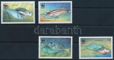 WWF: parrot fish set WWF: Papagájhalak sor