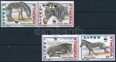 WWF: Grévy zebra set, WWF: Grévy zebra sor