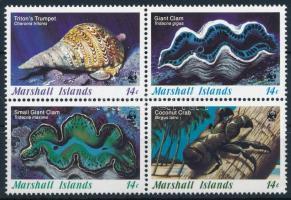 WWF: Seashells set, WWF: Tengeri kagylók sor