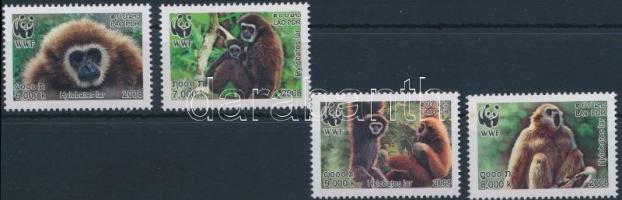 WWF: Lar gibbon set WWF: Fehérkezű gibbon sor