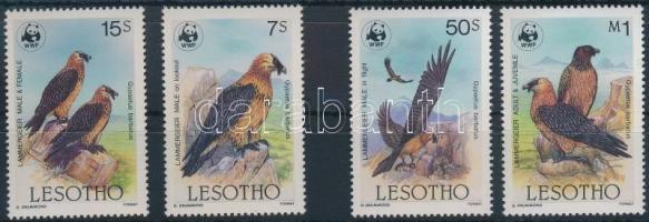 WWF: Bearded vulture set, WWF: Szakállas saskeselyű sor