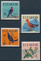 Tropical set, Trópusi madarak sor