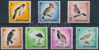 Birds set Madarak sor