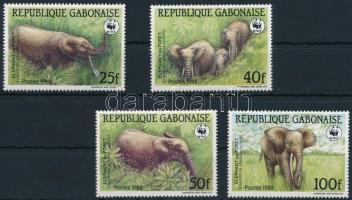WWF Forest elephant set WWF: Erdei elefánt sor