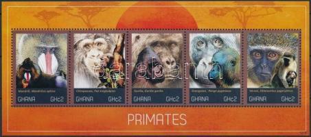 Apes set, Majom sor