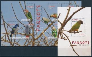 Parrots minisheet + block, Papagájok kisív  + blokk