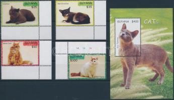 Cats corner set + block, Macskák ívsarki sor + blokk