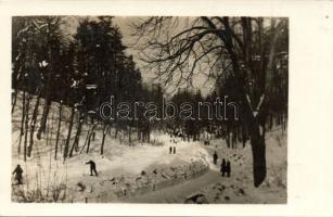 Lviv, Lwów, Lemberg; Striysky Park, winter, skiers