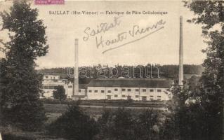 Saillat (Haute-Vienne), Fabrique de Pate Cellulosique / Cellulose Paste Factory