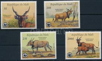 WWF Common eland set, WWF: Jávorantilop sor