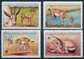 WWF, gazella sor, WWF Gazelle set