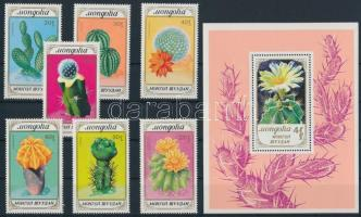 Cacti set + block, Kaktuszok sor + blokk
