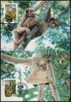 WWF Monkies set 2 FDC WWF: Majmok sor 2 db CM-en