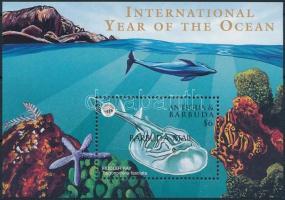 International Year of the Ocean block, Az óceán nemzetközi éve blokk