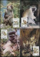 WWF: Monkey set on 4 CM, WWF: majom sor 4 db CM-en