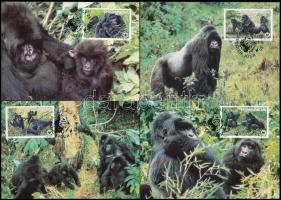 WWF Gorilla set on 4 CM, WWF: Gorilla sor 4 db CM-en