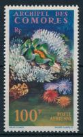 Coral, Korallok bélyeg
