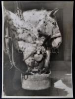 cca 1937 Pöltinger Gusztáv (?-?) soproni fotóművész hagyatékából jelzés nélküli, vintage fotóművészeti alkotás (Itatás), 40x30 cm