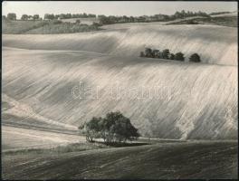 cca 1987 Gebhardt György (1910-1993) budapesti fotóművész hagyatékából 2 db vintage fénykép, az egyik feliratozott, a másik színezett, 18x24 cm