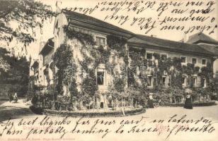1910 Kéked-fürdő, Melczer-féle uradalmi kastély, Hajts Kornél felvétele (fl)