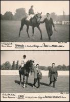 1965-1966 Bécs, Versenylovak, Piperkőc és Zara, 2 db feliratozott fotó, 12×18 cm