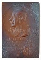 Mester Jenő (1882-1961)? ~1911. Dr. Chizsnei Cherven Flórisnak - Hálás tanítványai és tisztelői - 1861-1911 Br emlékplakett (37x55mm) T:2 patina HP 3573.