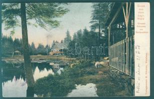 Bayerischer Wald, Arbersee, Restaurant, Emb.