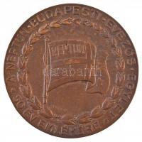 Berán Lajos (1882-1943) 1934. A Neptun Budapesti Evezős Egylet - 50 év emlékére Br emlékérem, peremén BERÁN N. BPEST. gyártói jelzéssel (59mm) T:2
