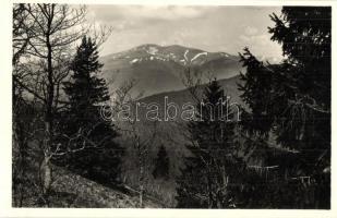 Tiszaborkút, Kvaszi; Bliznica a Mencsulról nézve / Hora Blyznytsya, Menchul / mountain peak
