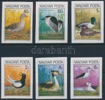 1980 Madarak (IX.) - Védett vízimadarak vágott sor (4.500)