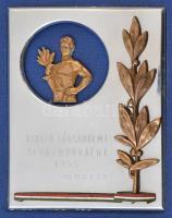 1955. Kiváló Társadalmi Munkáért 1955 VII. ker. T.S.B. aranyozott, zománcozott fém plakett tokba rögzíte (100x75mm) T:2