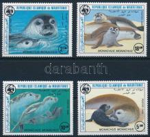 WWF: Seals set, WWF: Fókák