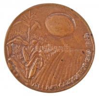 1969. Állami Gazdaságok 1949-1969 egyoldalas Br plakett. Szign.: SZJ (86,5mm) T:2